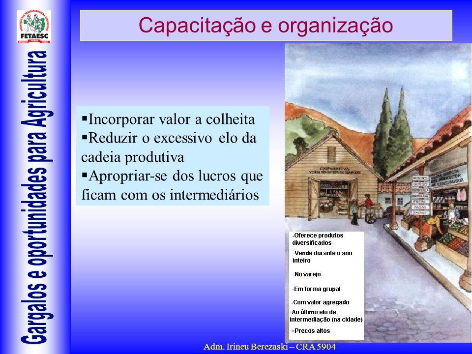 Adm. Irineu Berezaski – CRA 5904 Capacitação e organização Incorporar valor a colheita Reduzir o excessivo elo da cadeia produtiva Apropriar-se dos lu