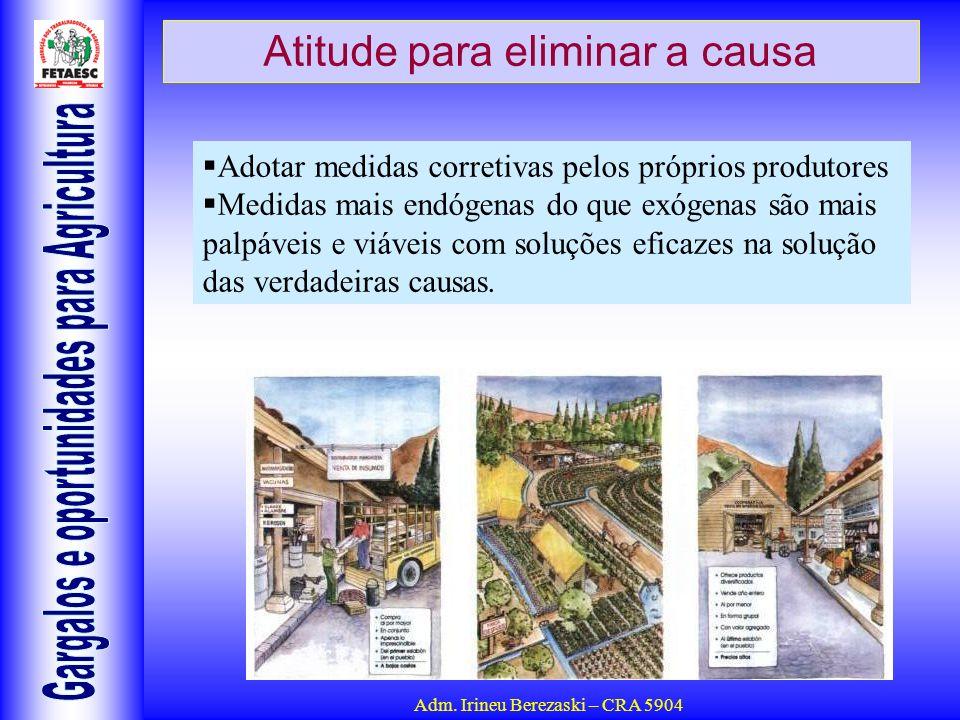 Adm. Irineu Berezaski – CRA 5904 Atitude para eliminar a causa Adotar medidas corretivas pelos próprios produtores Medidas mais endógenas do que exóge
