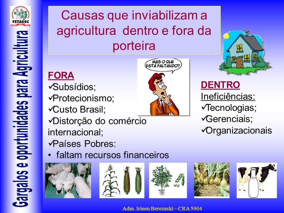 Adm. Irineu Berezaski – CRA 5904 Causas que inviabilizam a agricultura dentro e fora da porteira FORA Subsídios; Protecionismo; Custo Brasil; Distorçã