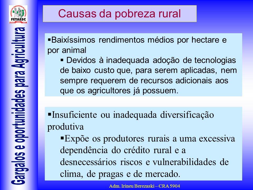 Adm. Irineu Berezaski – CRA 5904 Causas da pobreza rural Baixíssimos rendimentos médios por hectare e por animal Devidos à inadequada adoção de tecnol