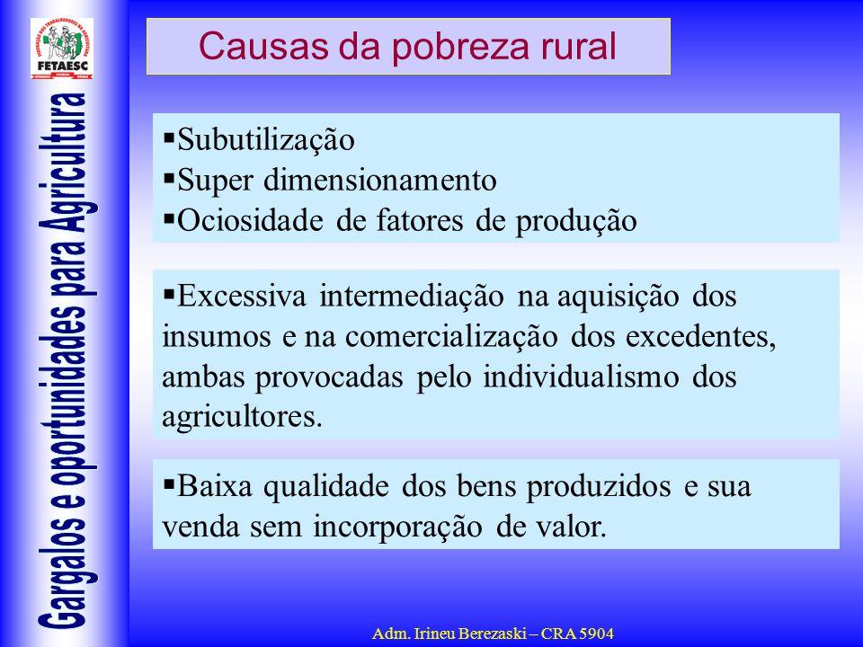 Adm. Irineu Berezaski – CRA 5904 Causas da pobreza rural Subutilização Super dimensionamento Ociosidade de fatores de produção Excessiva intermediação