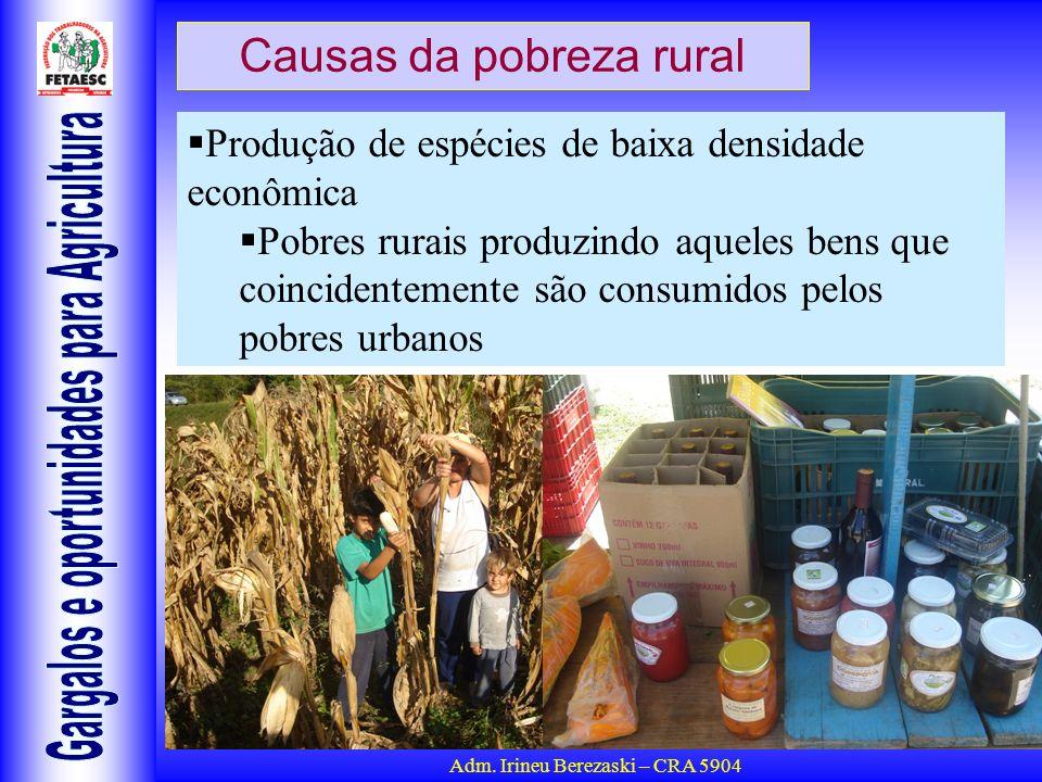 Adm. Irineu Berezaski – CRA 5904 Causas da pobreza rural Produção de espécies de baixa densidade econômica Pobres rurais produzindo aqueles bens que c