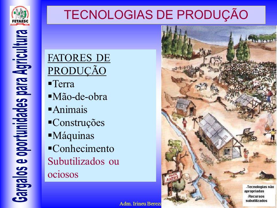 Adm. Irineu Berezaski – CRA 5904 TECNOLOGIAS DE PRODUÇÃO FATORES DE PRODUÇÃO Terra Mão-de-obra Animais Construções Máquinas Conhecimento Subutilizados