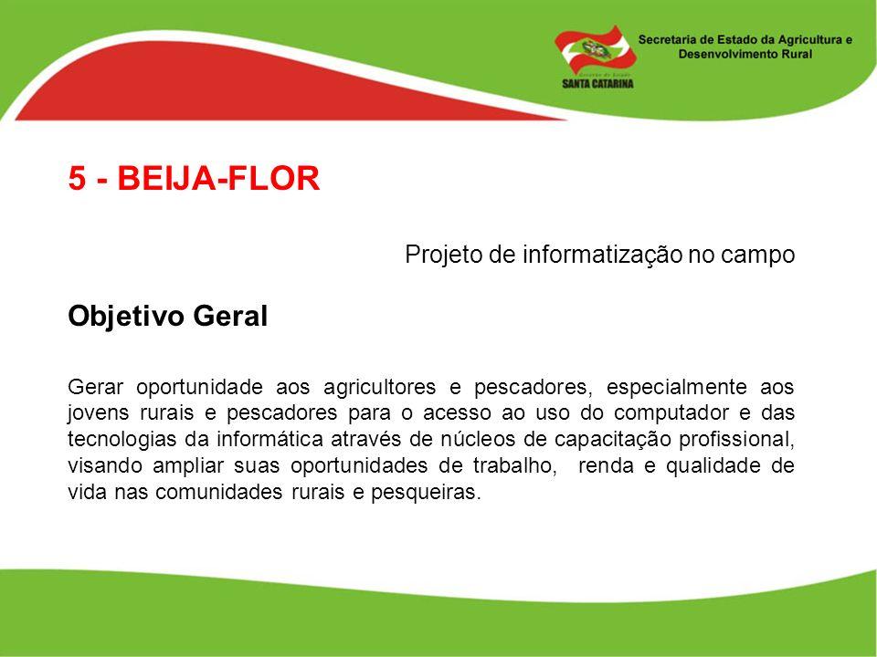 5 - BEIJA-FLOR Projeto de informatização no campo Objetivo Geral Gerar oportunidade aos agricultores e pescadores, especialmente aos jovens rurais e p