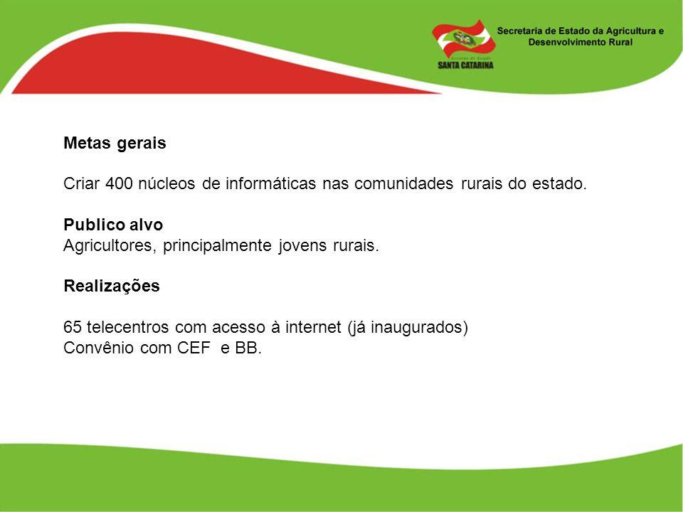 Metas gerais Criar 400 núcleos de informáticas nas comunidades rurais do estado. Publico alvo Agricultores, principalmente jovens rurais. Realizações