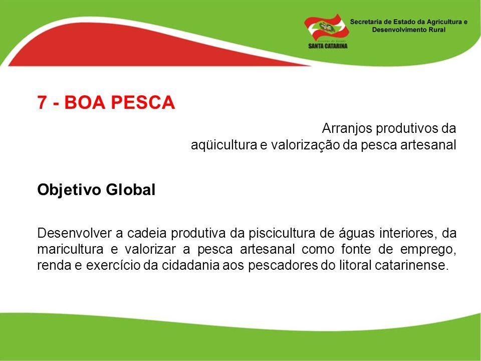 7 - BOA PESCA Arranjos produtivos da aqüicultura e valorização da pesca artesanal Objetivo Global Desenvolver a cadeia produtiva da piscicultura de ág