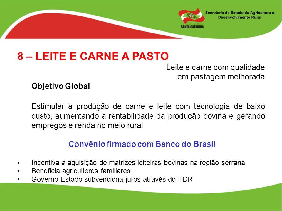 8 – LEITE E CARNE A PASTO Leite e carne com qualidade em pastagem melhorada Objetivo Global Estimular a produção de carne e leite com tecnologia de ba