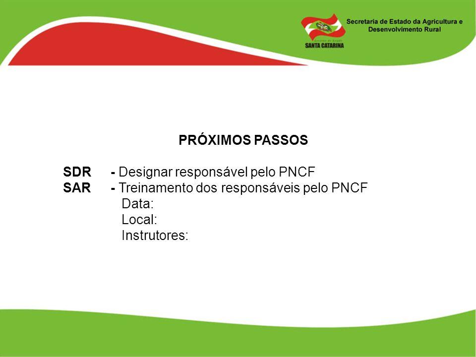 PRÓXIMOS PASSOS SDR- Designar responsável pelo PNCF SAR - Treinamento dos responsáveis pelo PNCF Data: Local: Instrutores:
