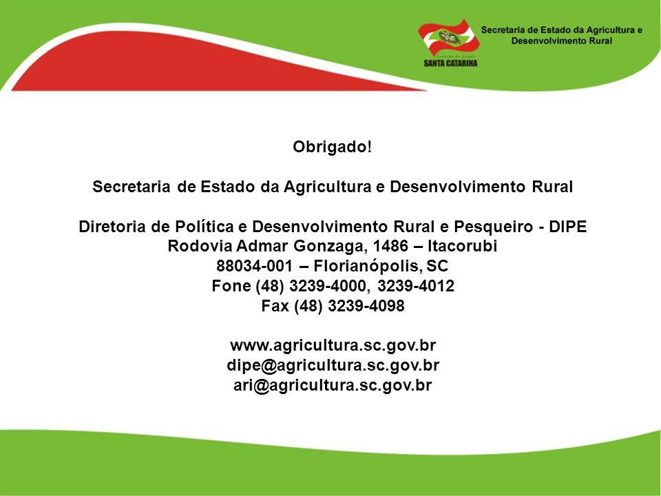 Obrigado! Secretaria de Estado da Agricultura e Desenvolvimento Rural Diretoria de Política e Desenvolvimento Rural e Pesqueiro - DIPE Rodovia Admar G