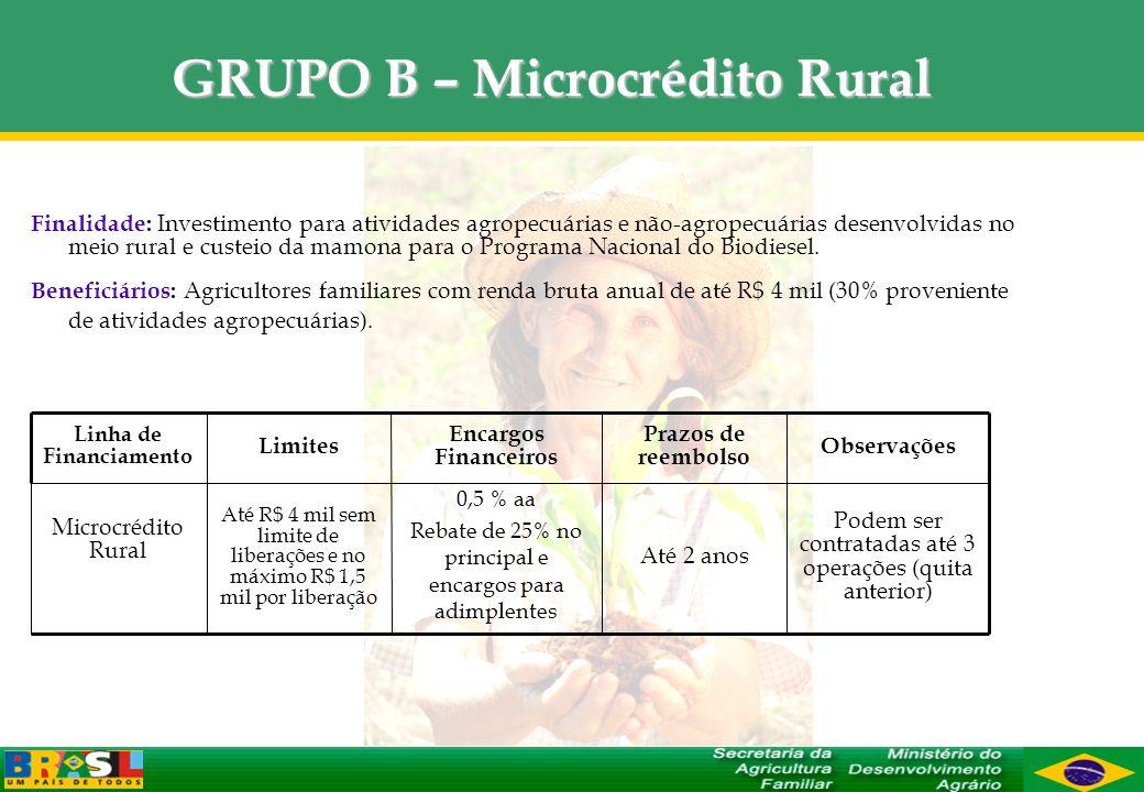 GRUPO B – Microcrédito Rural Finalidade: Investimento para atividades agropecuárias e não-agropecuárias desenvolvidas no meio rural e custeio da mamon