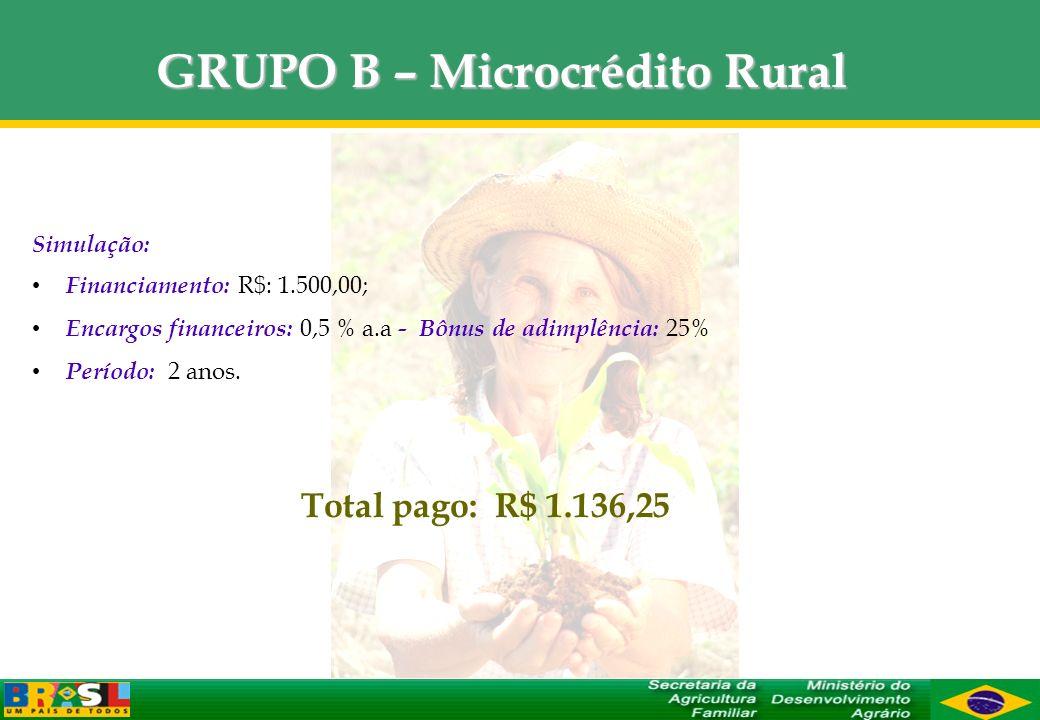 GRUPO B – Microcrédito Rural Simulação: Financiamento: R$: 1.500,00; Encargos financeiros: 0,5 % a.a - Bônus de adimplência: 25% Período: 2 anos. Tota