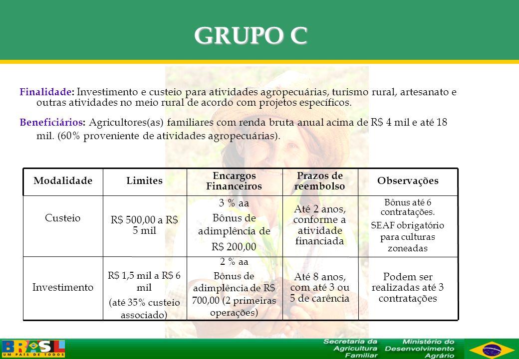 GRUPO C Finalidade: Investimento e custeio para atividades agropecuárias, turismo rural, artesanato e outras atividades no meio rural de acordo com pr