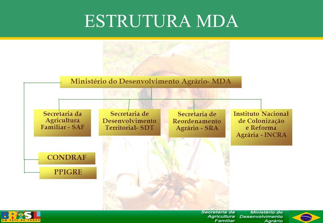 ESTRUTURA MDA Ministério do Desenvolvimento Agrário- MDA Secretaria da Agricultura Familiar - SAF Secretaria de Desenvolvimento Territorial- SDT Secre