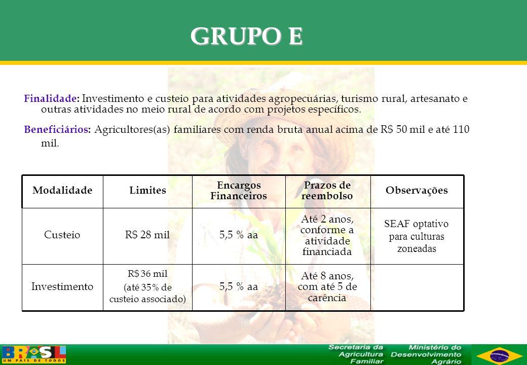 GRUPO E Finalidade: Investimento e custeio para atividades agropecuárias, turismo rural, artesanato e outras atividades no meio rural de acordo com pr