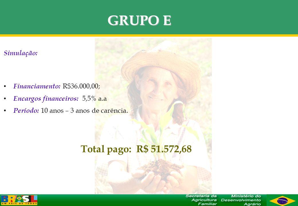 GRUPO E Simulação: Financiamento: R$36.000,00; Encargos financeiros: 5,5% a.a Período: 10 anos – 3 anos de carência. Total pago: R$ 51.572,68