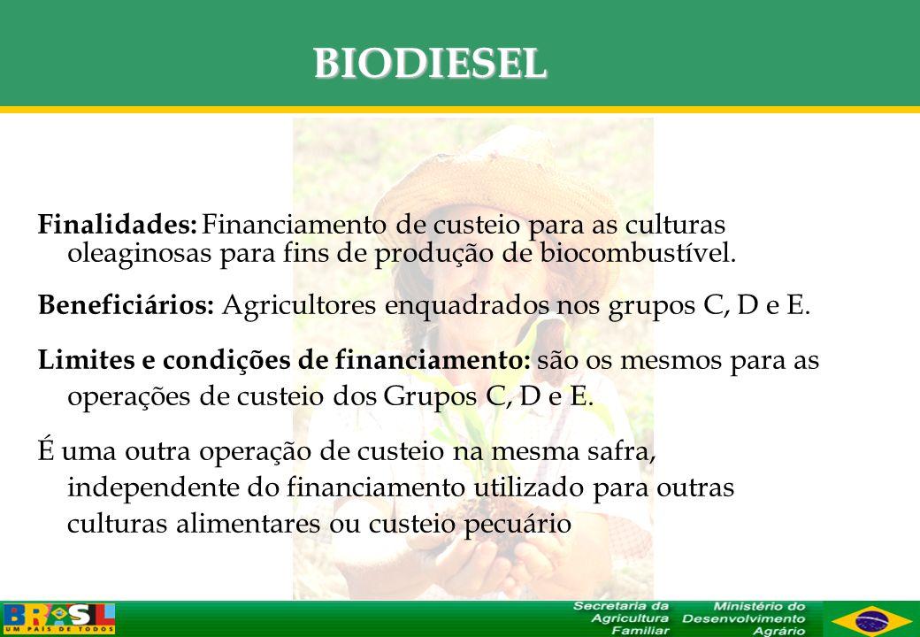 BIODIESEL Finalidades: Financiamento de custeio para as culturas oleaginosas para fins de produção de biocombustível. Beneficiários: Agricultores enqu