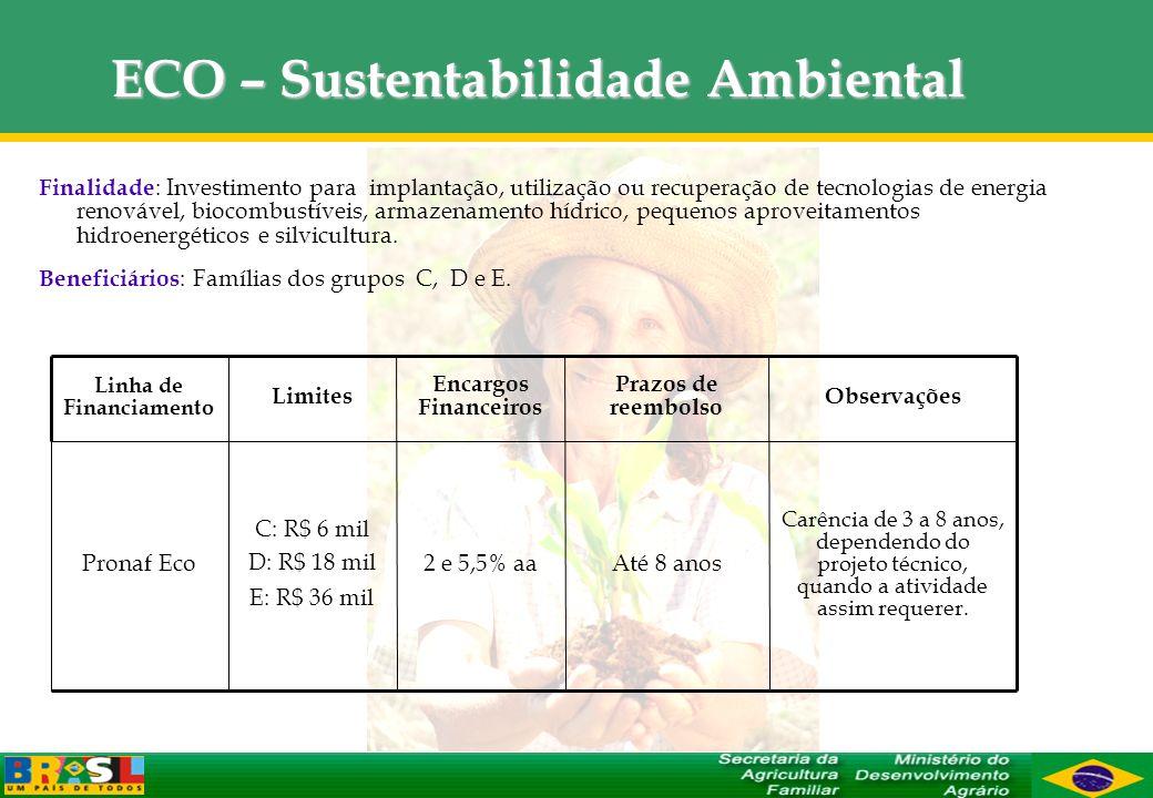 ECO – Sustentabilidade Ambiental Finalidade : Investimento para implantação, utilização ou recuperação de tecnologias de energia renovável, biocombust