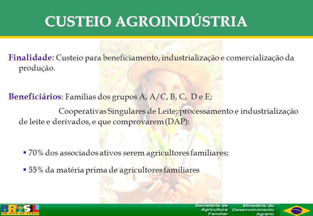 CUSTEIO AGROINDÚSTRIA Finalidade : Custeio para beneficiamento, industrialização e comercialização da produção. Beneficiários : Famílias dos grupos A,