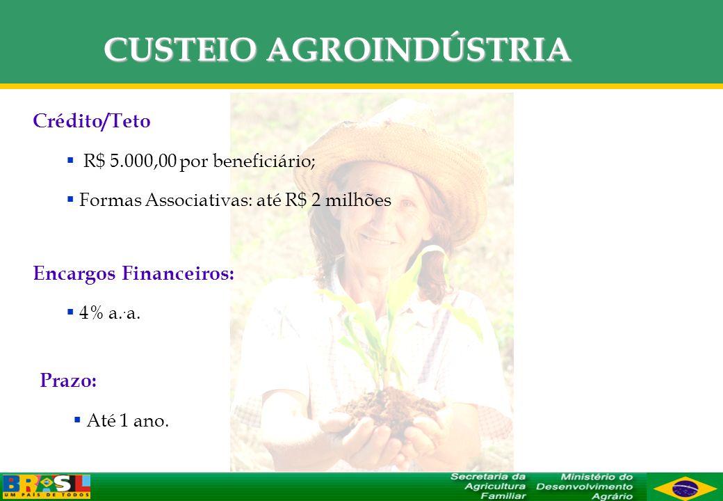CUSTEIO AGROINDÚSTRIA Crédito/Teto R$ 5.000,00 por beneficiário; Formas Associativas: até R$ 2 milhões Encargos Financeiros: 4% a.. a. Prazo: Até 1 an