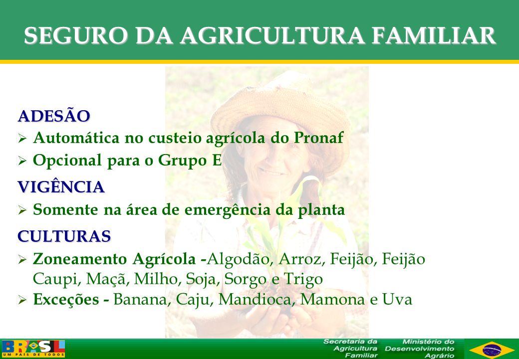 SEGURO DA AGRICULTURA FAMILIAR ADESÃO Automática no custeio agrícola do Pronaf Opcional para o Grupo EVIGÊNCIA Somente na área de emergência da planta