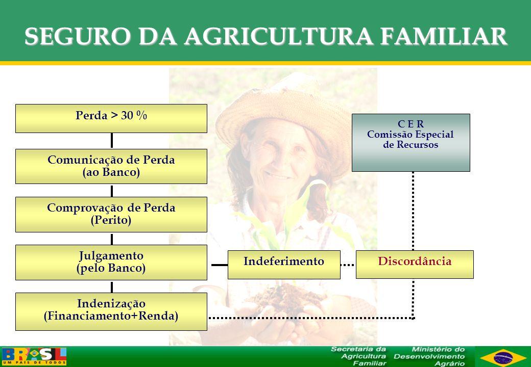 SEGURO DA AGRICULTURA FAMILIAR Perda > 30 % Comunicação de Perda (ao Banco) Comprovação de Perda (Perito) C E R Comissão Especial de Recursos Julgamen