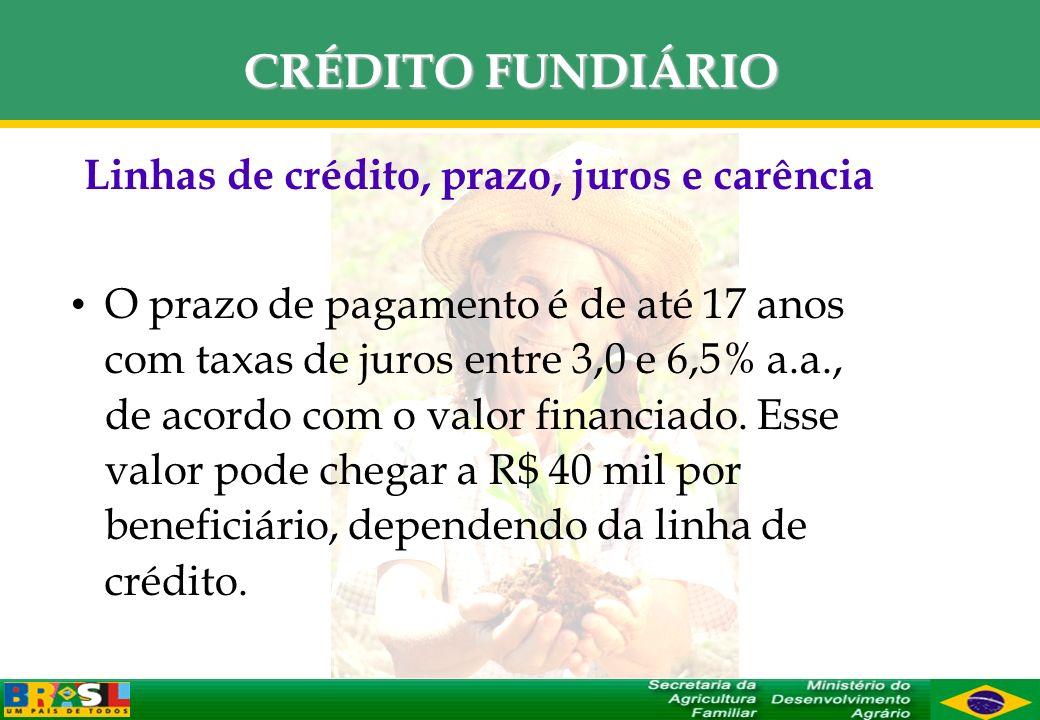 CRÉDITO FUNDIÁRIO Linhas de crédito, prazo, juros e carência O prazo de pagamento é de até 17 anos com taxas de juros entre 3,0 e 6,5% a.a., de acordo