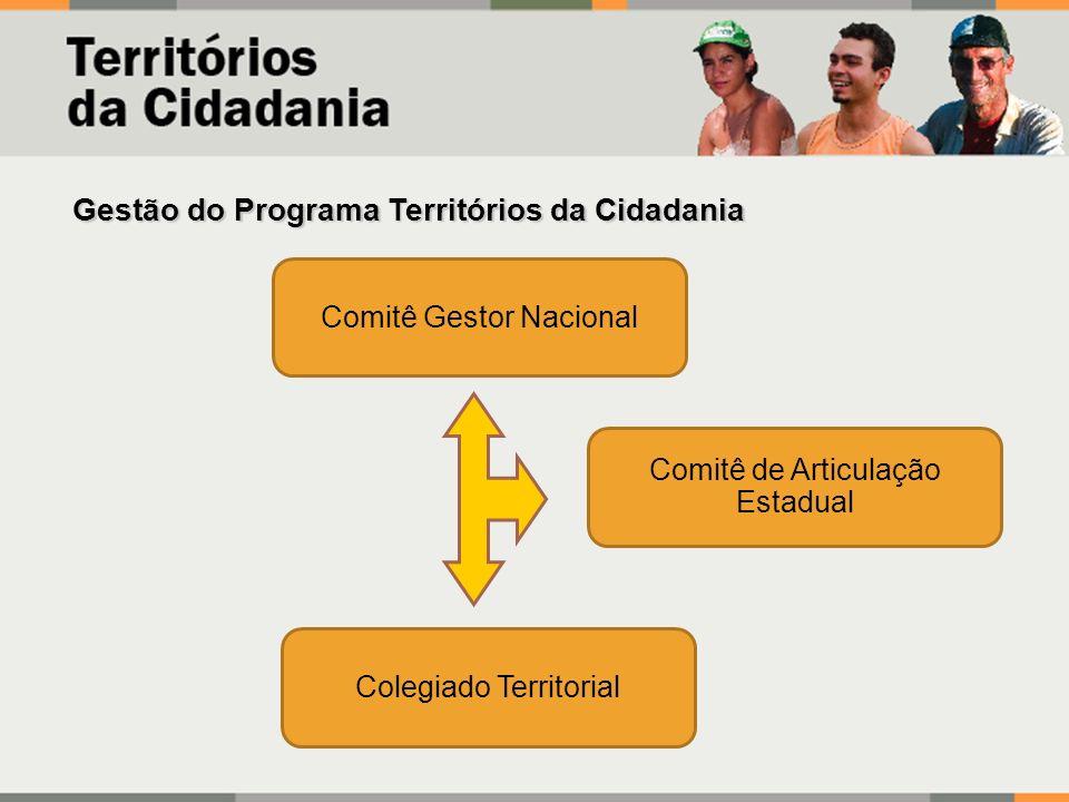 Gestão do Programa Territórios da Cidadania Comitê Gestor Nacional Comitê de Articulação Estadual Colegiado Territorial
