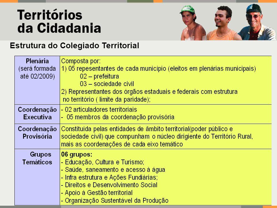 Estrutura do Colegiado Territorial