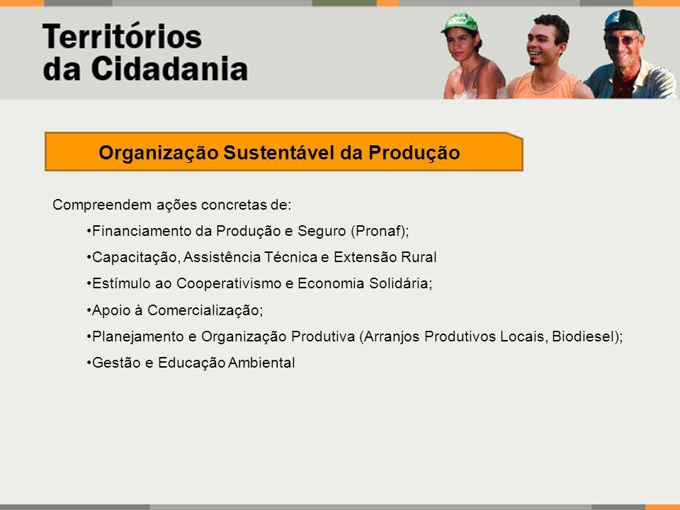 Compreendem ações concretas de: Financiamento da Produção e Seguro (Pronaf); Capacitação, Assistência Técnica e Extensão Rural Estímulo ao Cooperativi