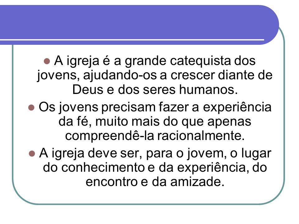 A Igreja no Brasil, com a escolha desse tema para a CF 2013, renova sua confiança no jovem, capaz de ouvir e de responder aos mais nobres convites que a vida lhe faz.
