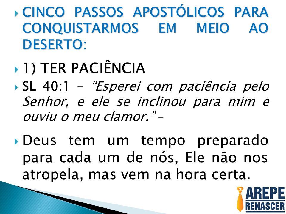 CINCO PASSOS APOSTÓLICOS PARA CONQUISTARMOS EM MEIO AO DESERTO: CINCO PASSOS APOSTÓLICOS PARA CONQUISTARMOS EM MEIO AO DESERTO: 1) TER PACIÊNCIA SL 40