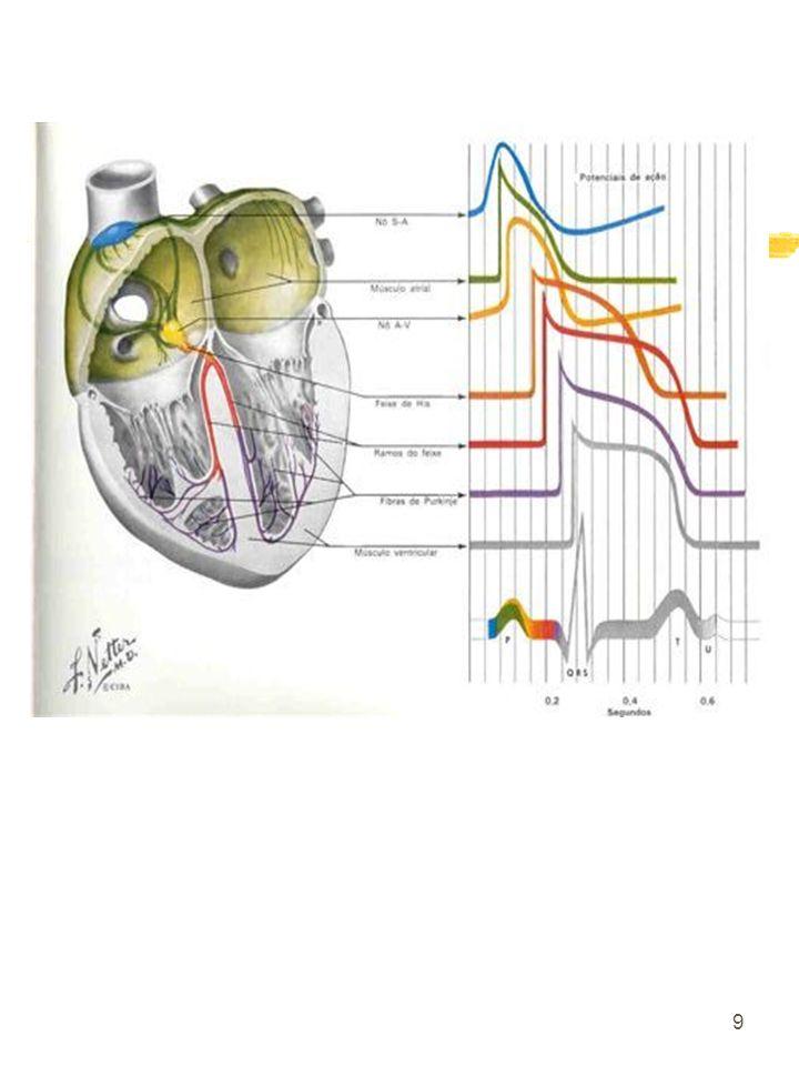 30 Principais Estudos em Idosos Hipertensos
