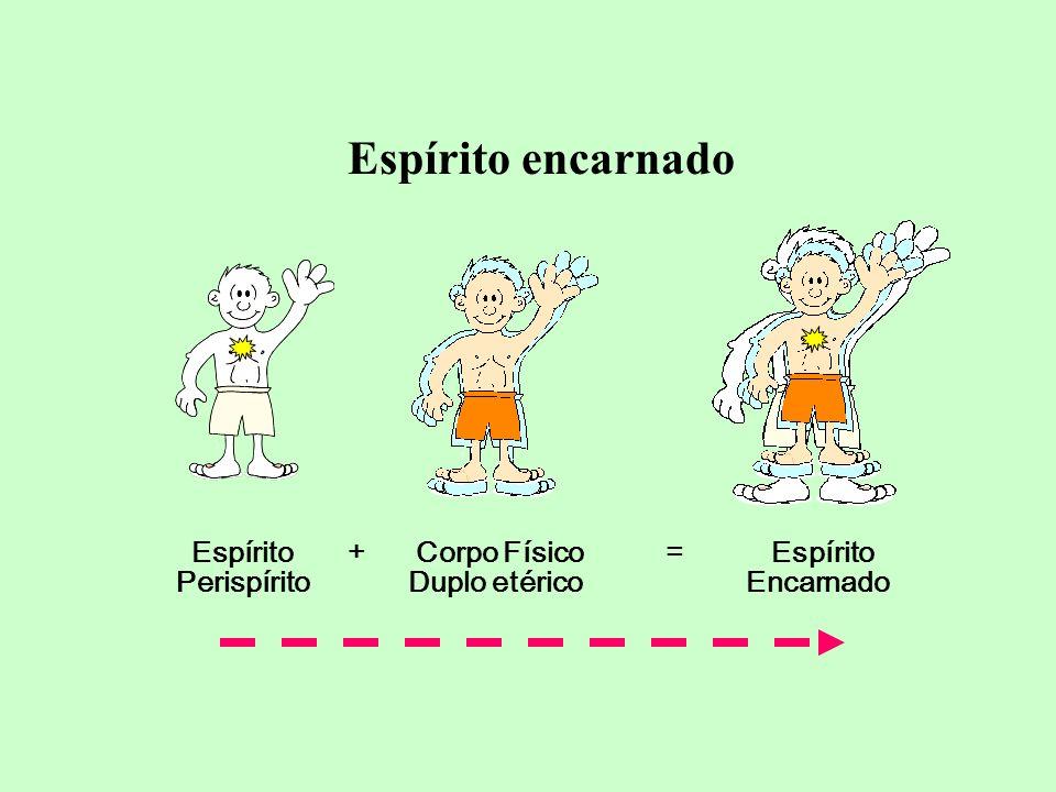 Perispírito Duplo etérico Encarnado Espírito + Corpo Físico = Espírito Espírito encarnado