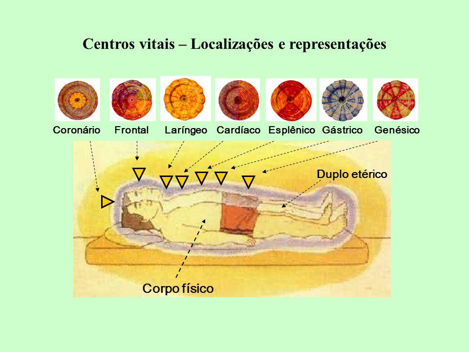 Corpo físico GenésicoGástricoEsplênicoCardíacoLaríngeoFrontalCoronário Duplo etérico Centros vitais – Localizações e representações