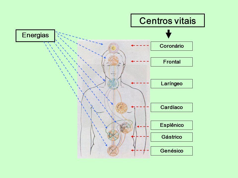 Energias Coronário Frontal Laríngeo Cardíaco Esplênico Gástrico Genésico Centros vitais