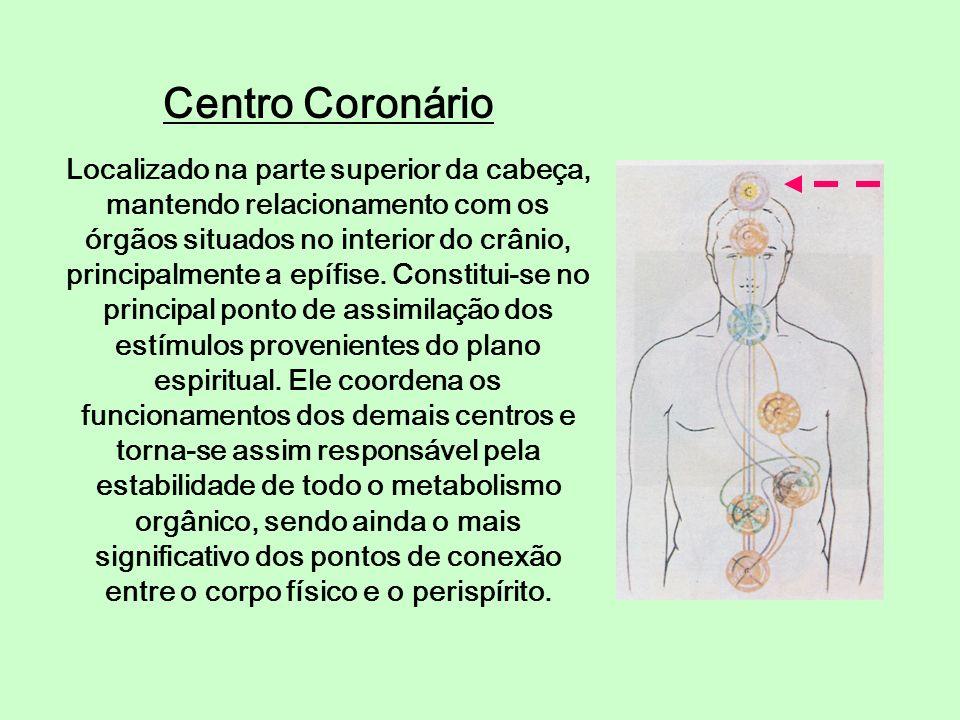 Centro Coronário Localizado na parte superior da cabeça, mantendo relacionamento com os órgãos situados no interior do crânio, principalmente a epífis