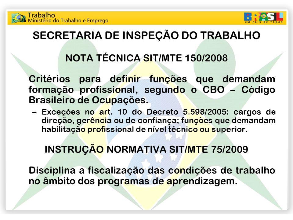 SECRETARIA DE INSPEÇÃO DO TRABALHO NOTA TÉCNICA SIT/MTE 150/2008 Critérios para definir funções que demandam formação profissional, segundo o CBO – Có