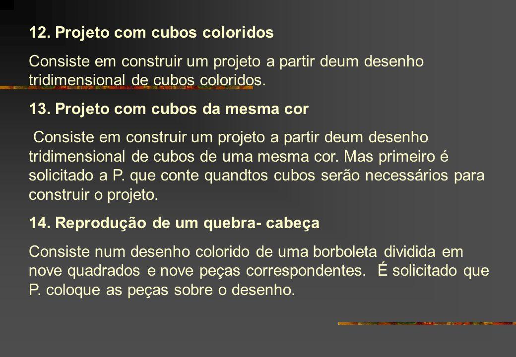 12. Projeto com cubos coloridos Consiste em construir um projeto a partir deum desenho tridimensional de cubos coloridos. 13. Projeto com cubos da mes