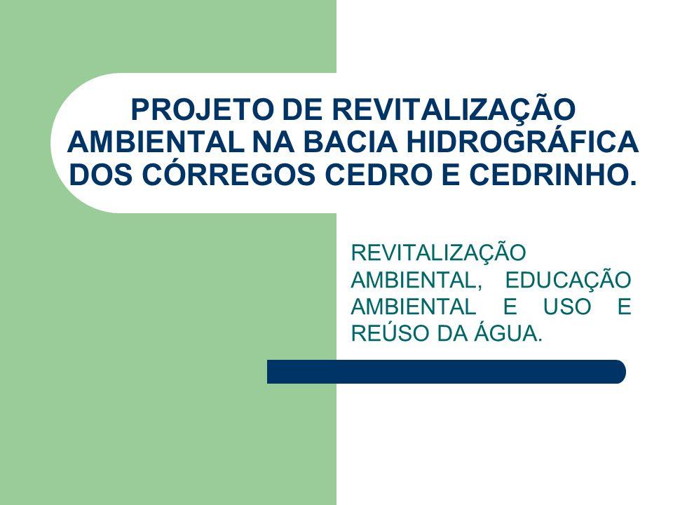 AÇÕES DE AGOSTO A DEZEMBRO DE 2010 Plantios TAC E TCRA: Empresas Reflorestamento 36.000 MUDAS D.E.R.