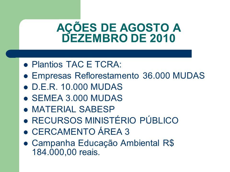 AÇÕES DE AGOSTO A DEZEMBRO DE 2010 Plantios TAC E TCRA: Empresas Reflorestamento 36.000 MUDAS D.E.R. 10.000 MUDAS SEMEA 3.000 MUDAS MATERIAL SABESP RE