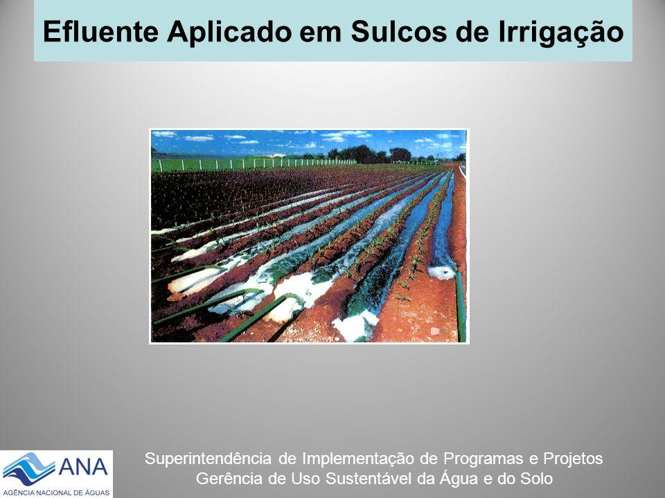 Superintendência de Implementação de Programas e Projetos Gerência de Uso Sustentável da Água e do Solo Efluente Aplicado em Sulcos de Irrigação