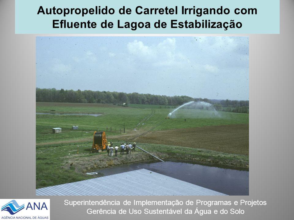 Superintendência de Implementação de Programas e Projetos Gerência de Uso Sustentável da Água e do Solo Autopropelido de Carretel Irrigando com Efluen