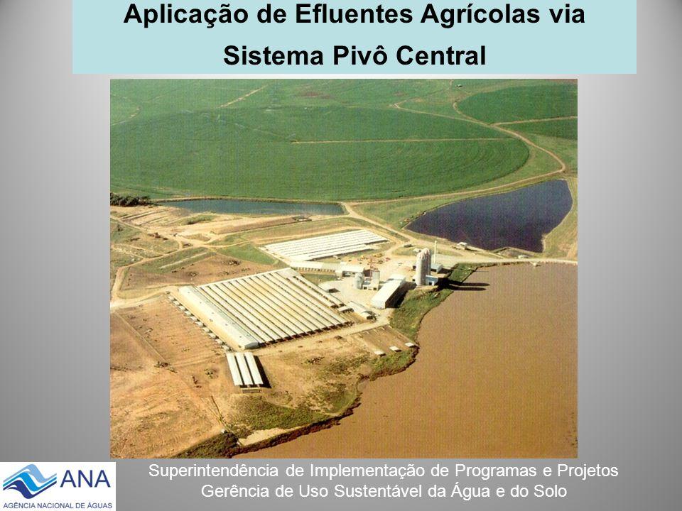 Superintendência de Implementação de Programas e Projetos Gerência de Uso Sustentável da Água e do Solo Aplicação de Efluentes Agrícolas via Sistema P