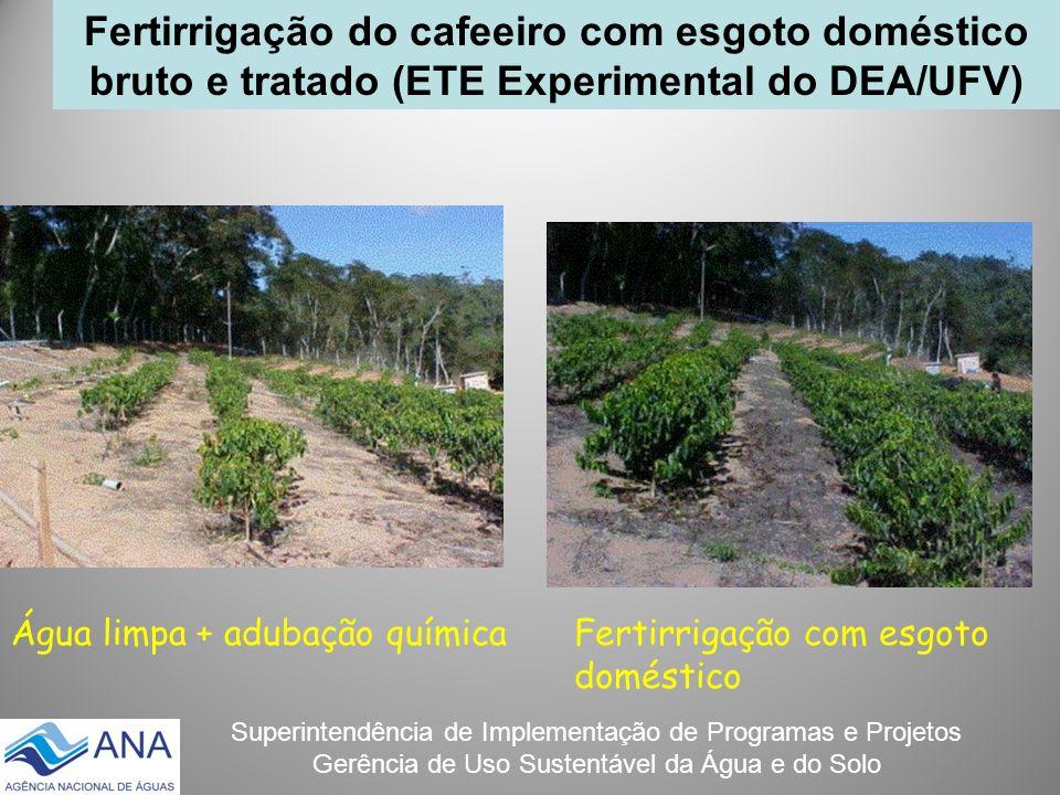Superintendência de Implementação de Programas e Projetos Gerência de Uso Sustentável da Água e do Solo Fertirrigação do cafeeiro com esgoto doméstico