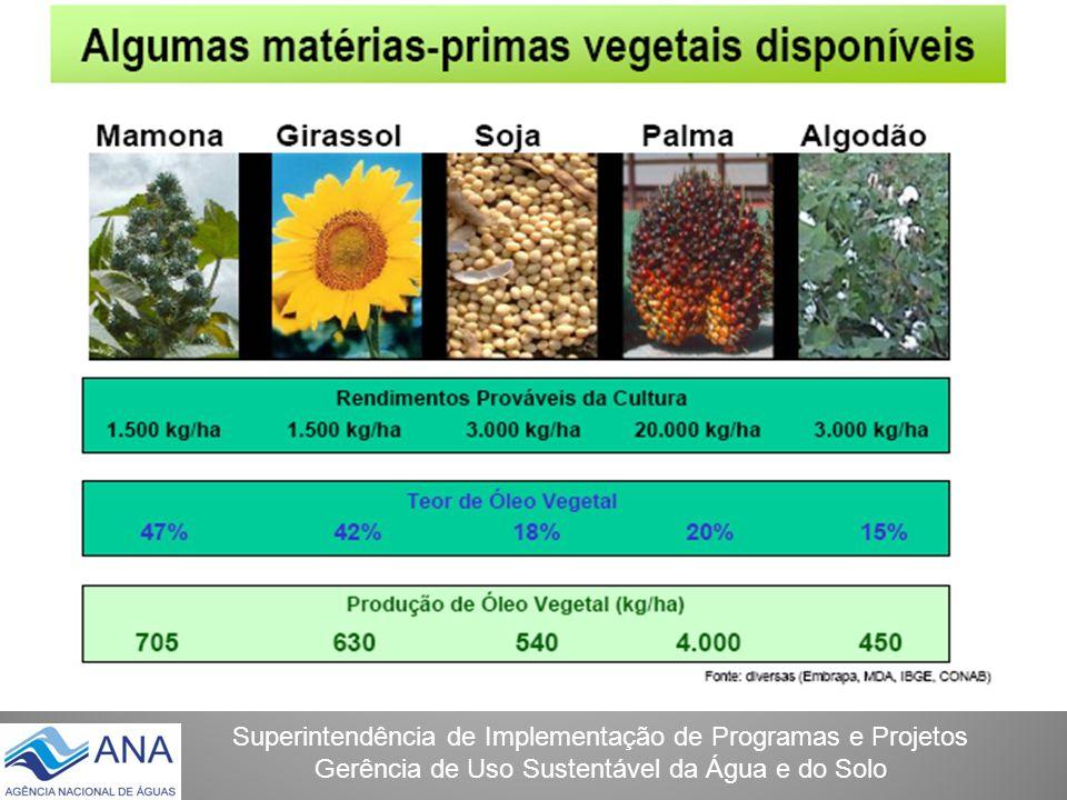 Superintendência de Implementação de Programas e Projetos Gerência de Uso Sustentável da Água e do Solo