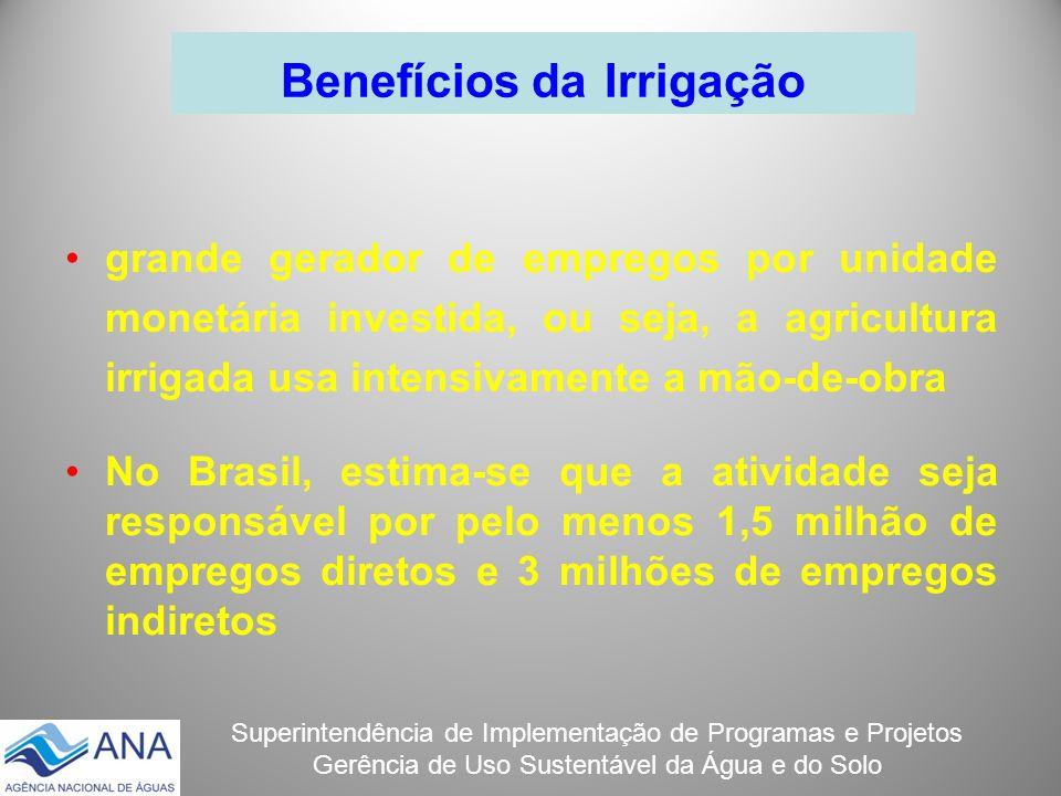 Superintendência de Implementação de Programas e Projetos Gerência de Uso Sustentável da Água e do Solo Benefícios da Irrigação grande gerador de empr