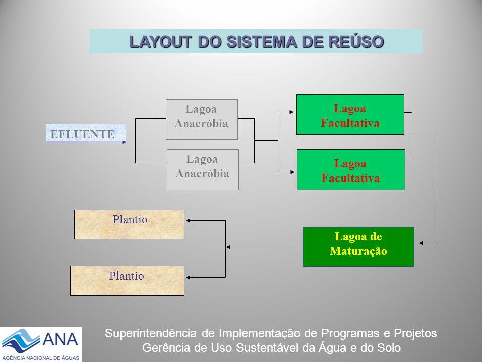Superintendência de Implementação de Programas e Projetos Gerência de Uso Sustentável da Água e do Solo LAYOUT DO SISTEMA DE REÚSO Lagoa de Maturação