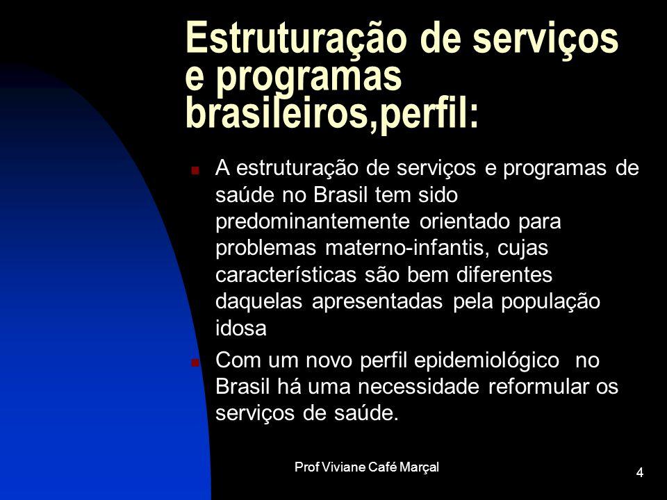 Prof Viviane Café Marçal 4 Estruturação de serviços e programas brasileiros,perfil: A estruturação de serviços e programas de saúde no Brasil tem sido
