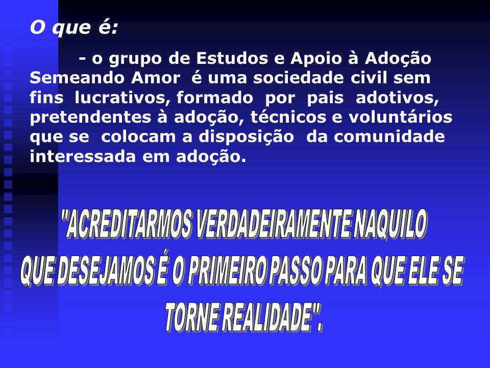 -lançamento da proposta de criação de um Grupo de Estudos e apoio à adoção através de projeto elaborado pela Assistente Social Forense de nossa Comarca Sra Idiamar F Machado.
