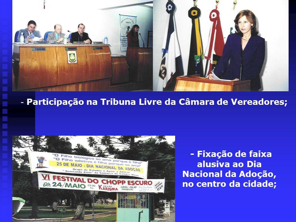 - Participação na Tribuna Livre da Câmara de Vereadores; - Fixação de faixa alusiva ao Dia Nacional da Adoção, no centro da cidade;